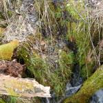 2014-03-15-Plitivce-Klaudia-52