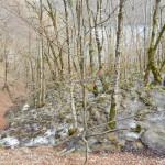 2014-03-15-Plitivce-Klaudia-72